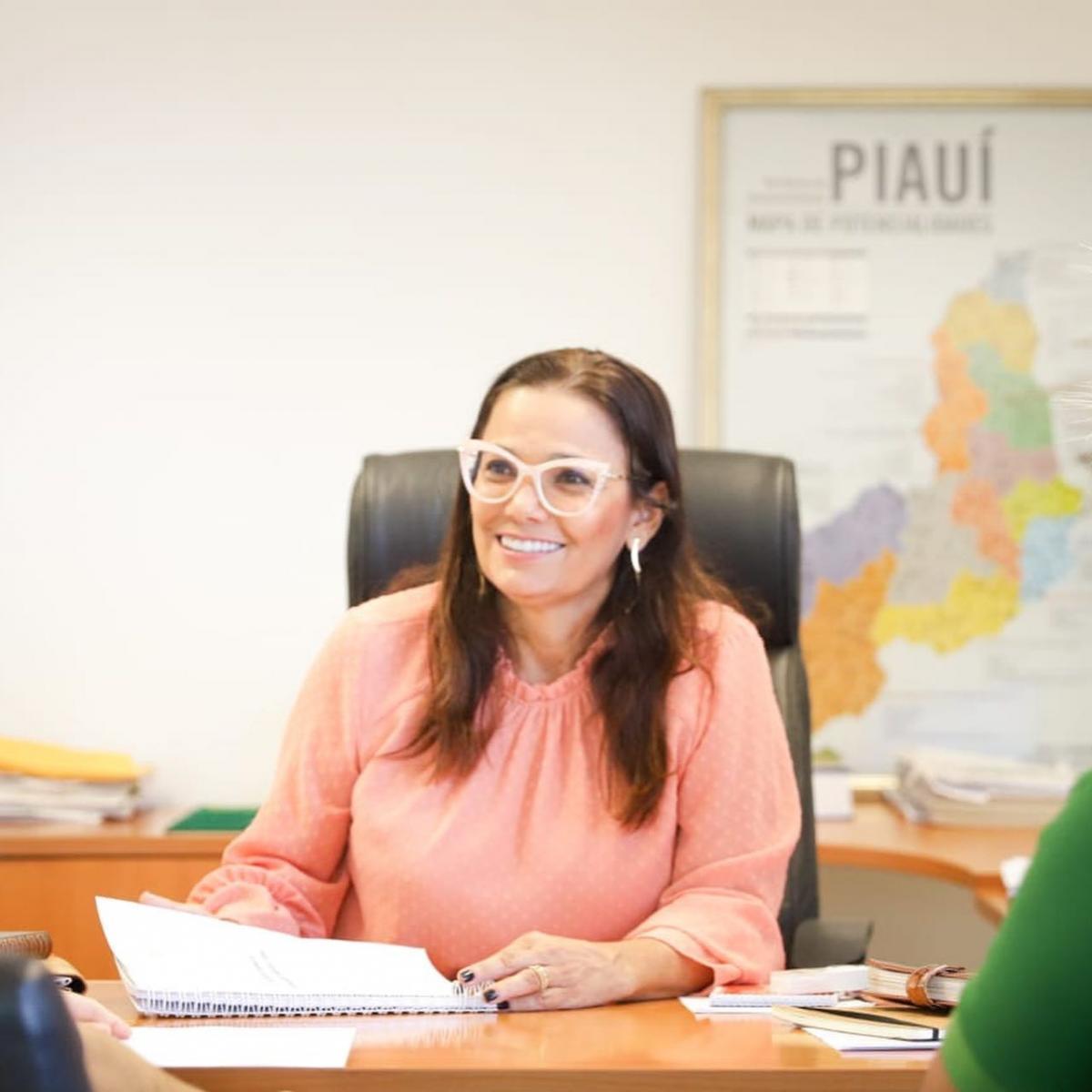 A Força da Notícia: Sádia Castro reúne-se com auditores(as) ambientais da Semar para aprovar nova IN de Licenciamento