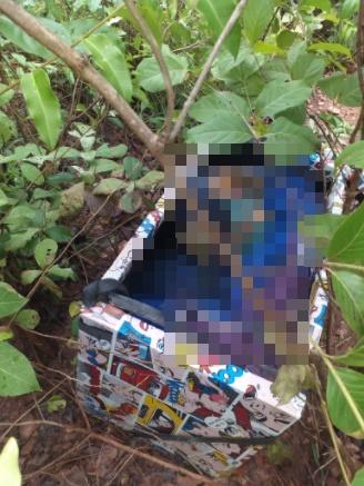 Corpo é encontrado dentro de caixa de presente na zona norte de Teresina