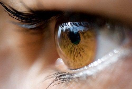 Exposição prolongada aos raios solares pode causar inflamação na córnea; saiba mais