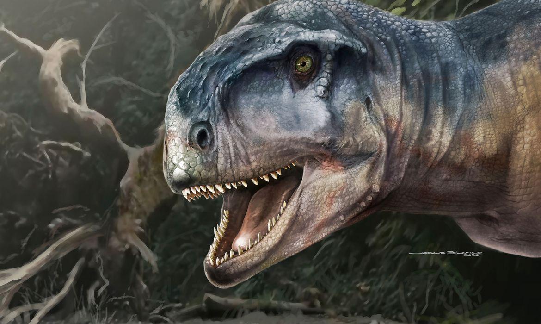 Nova espécie de dinossauro com cerca de 80 milhões de anos é descoberta