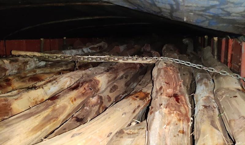 Carga de madeira avaliada em mais de R$ 200 MIL é apreendida no Piauí