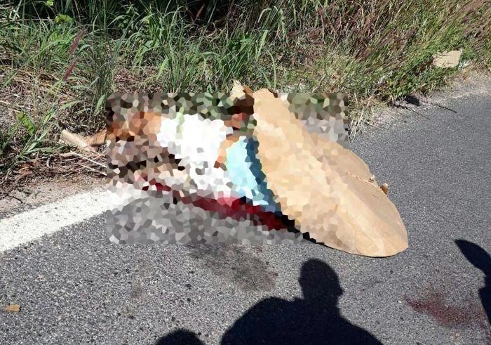 Acidente entre moto e caminhão deixa vítima fatal na BR-316