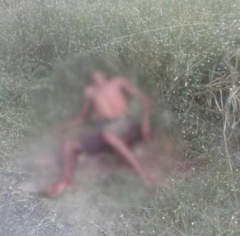 Corpo é encontrado em matagal na zona Norte de Teresina