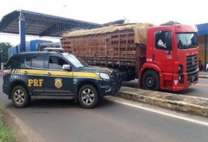 Polícia Rodoviária Federal apreende madeira ilegal em Floriano