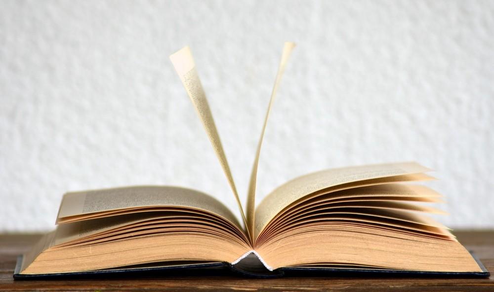 Academia Brasileira de Letras inclui 'feminicídio', 'sororidade' e 'home office' em vocabulário atualizado da língua portuguesa