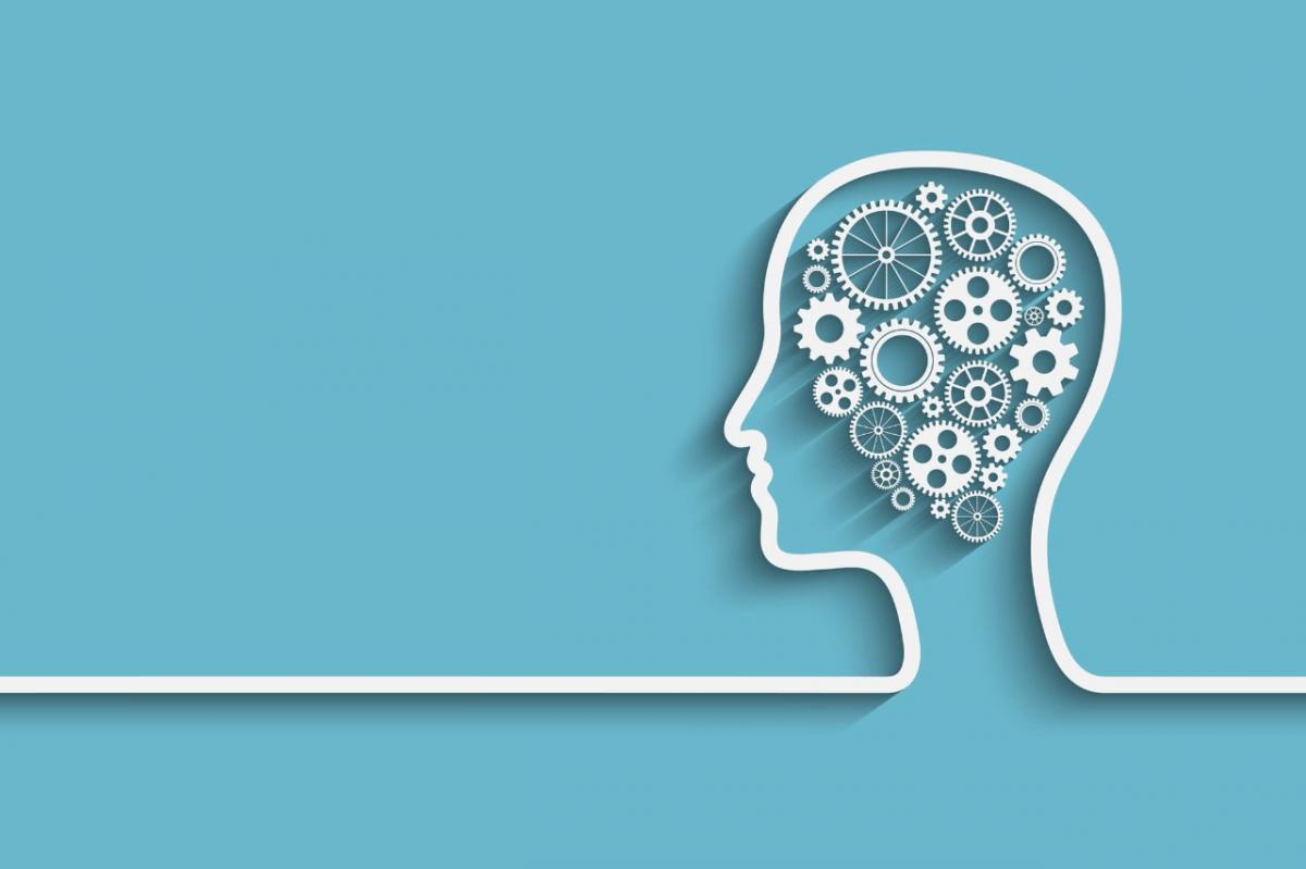 Quando as funções cognitivas começam a se deteriorar?