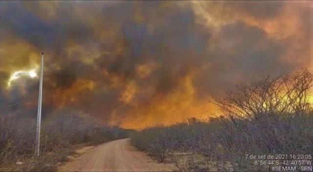 Incêndio de grandes proporções ameaça Parque Nacional da Serra da Capivara