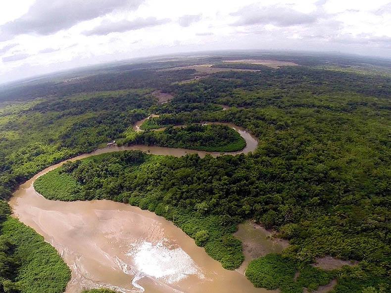 Avanço de desmatamento em Amazônia preocupa pesquisadores