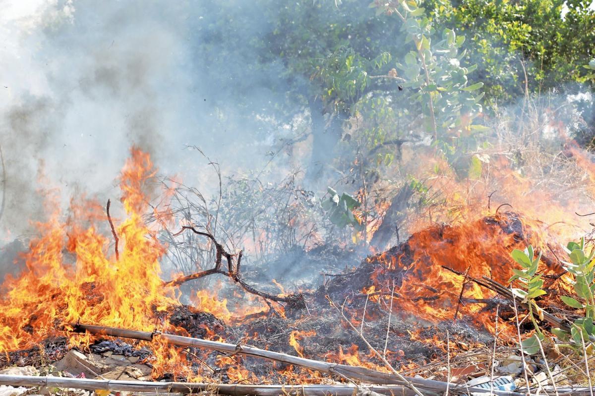 SEMAR proíbe temporariamente queimadas controladas no Piauí