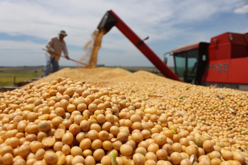 Balança comercial do Piauí apresenta saldo positivo no primeiro semestre