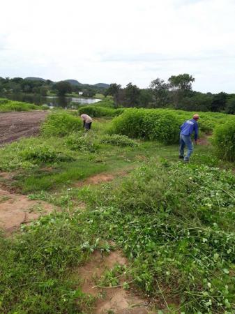 Ação da prefeitura restaura e preserva recursos ambientais em Alto Longá
