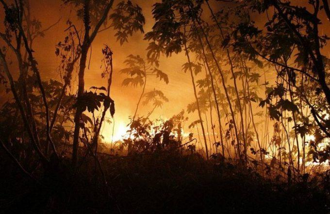 Incêndio de grandes proporções atinge vegetação em Parnaíba