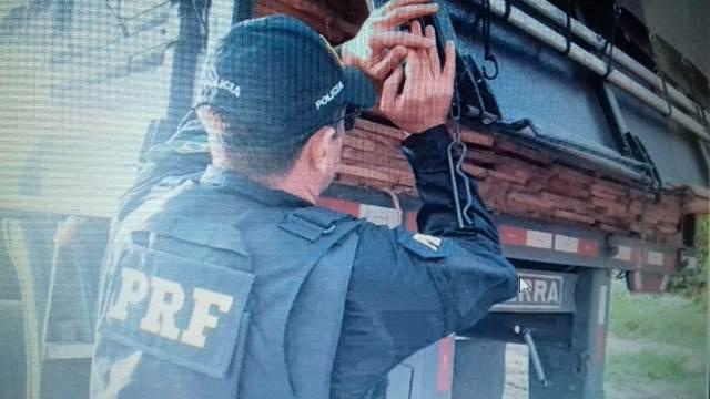 PRF apreende mais de 40 toneladas de madeira ilegal