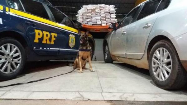 PRF prende motorista por tráfico de drogas em Floriano