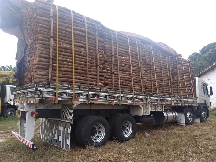 PM apreende cargas de madeira ilegal em Caraúbas do Piauí