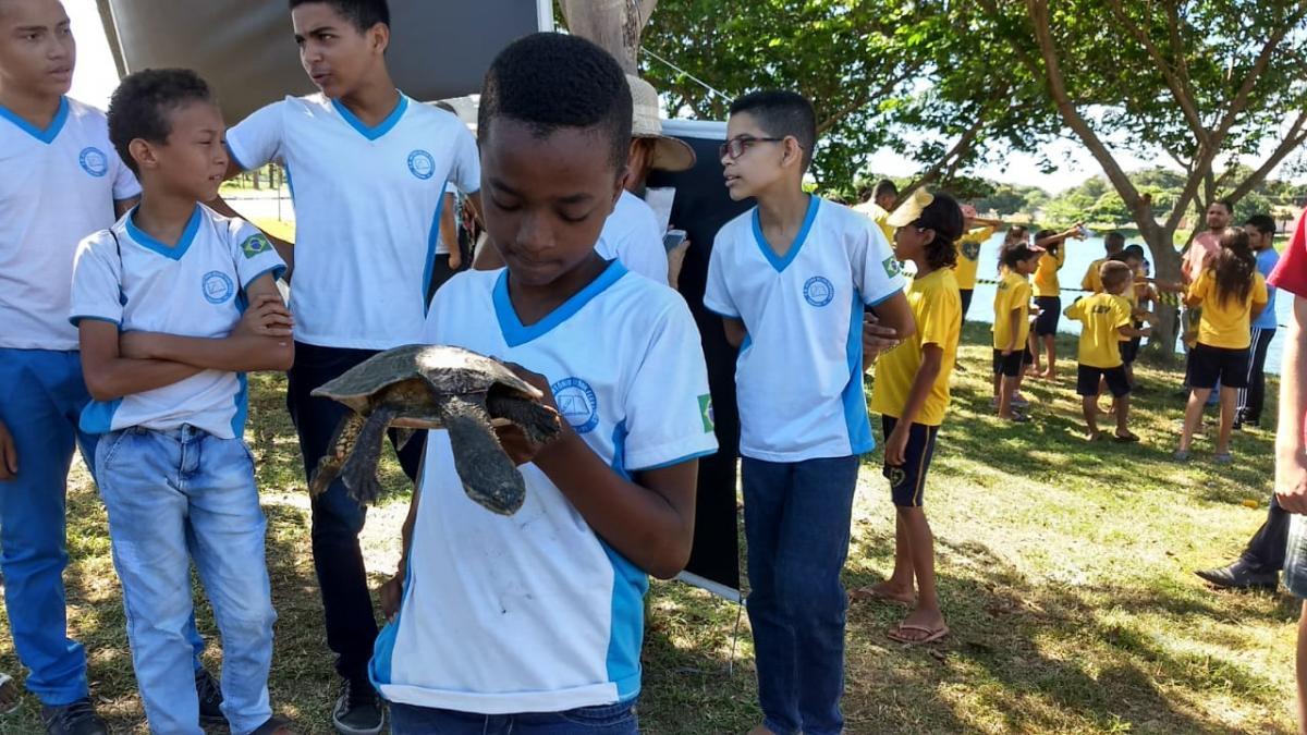 Animais resgatados são soltos no Parque Lagoas do Norte em Teresina