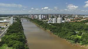 Margens do Rio Poti terá o replantio de 100 árvores