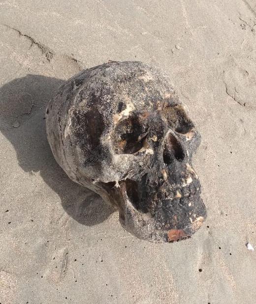 Crânio é encontrado na Praia de Atalaia em Luís Correia