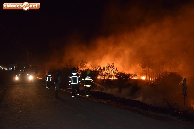 Incêndio atinge mais de 100 m² de matagal do Rio Guaribas em Picos
