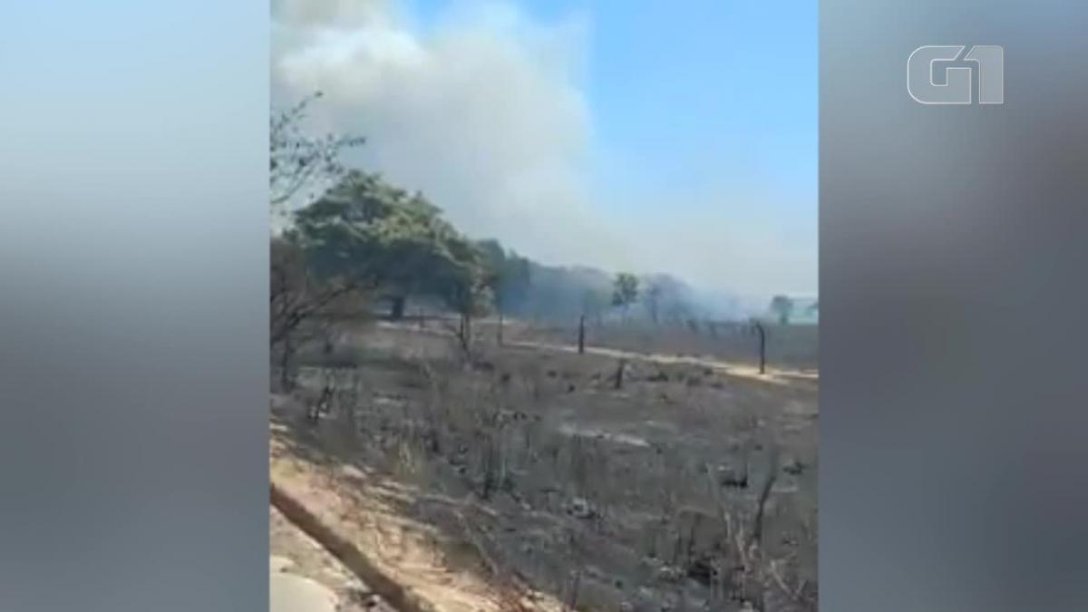Incêndio em fazenda de Biodiesel, é controlado após 42 horas no Piauí