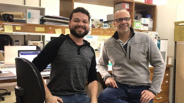 Cientista brasileiro pesquisa terapia genética para ganhar massa muscular