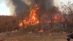 Piauí registra mais de 300 queimadas em menos de 24 horas, segundo INPE.