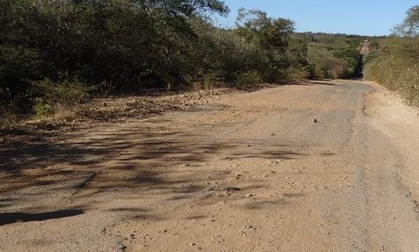 DER retomam obras da rodovia PI-255 que interliga o município de Curimatá e Avelino Lopes