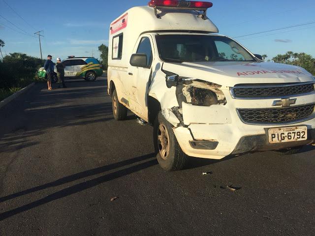 Ambulância colide em animal e paciente fica ferida