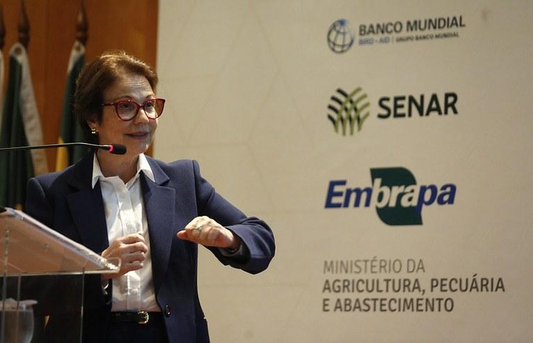Projeto ABC Cerrado recupera mais de 93 mil hectares de áreas degradadas em 7 estados e no DF