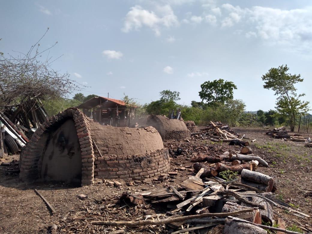 Delegacia cumpre mandado a uma carvoaria clandestina no município de Altos/PI