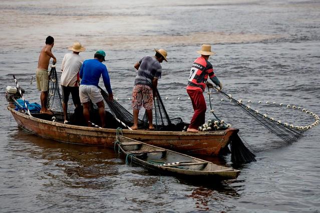 Medida Provisória cria auxílio emergencial para pescadores atingidos por mancha de óleo