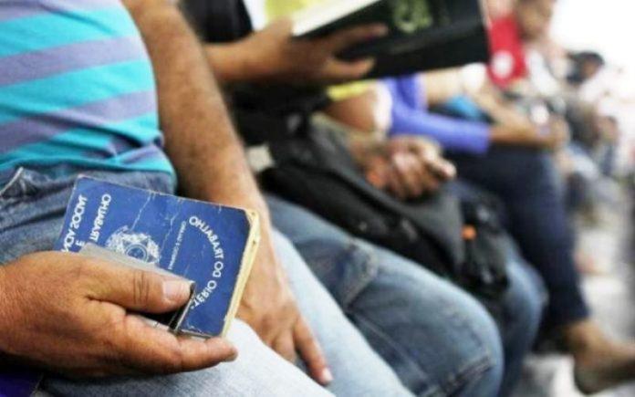Taxa de desemprego cai para 11,6%, aponta IBGE