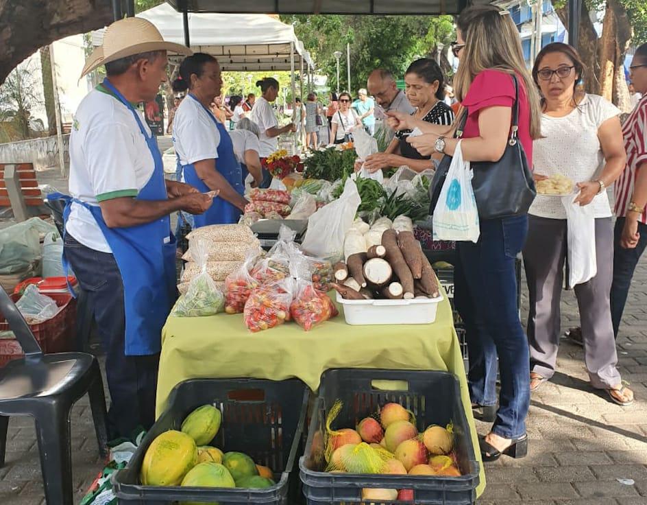 Agricultura Familiar: feira de produtos agroecológicos aconteceu hoje (14) em Teresina