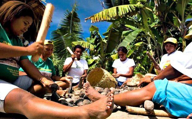 Museu do Piauí celebra o Dia da Mulher com exposição sobre as quebradeiras de coco