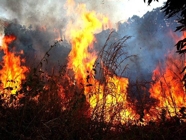 Defesa Civil faz alerta para início do período de queimadas em Teresina