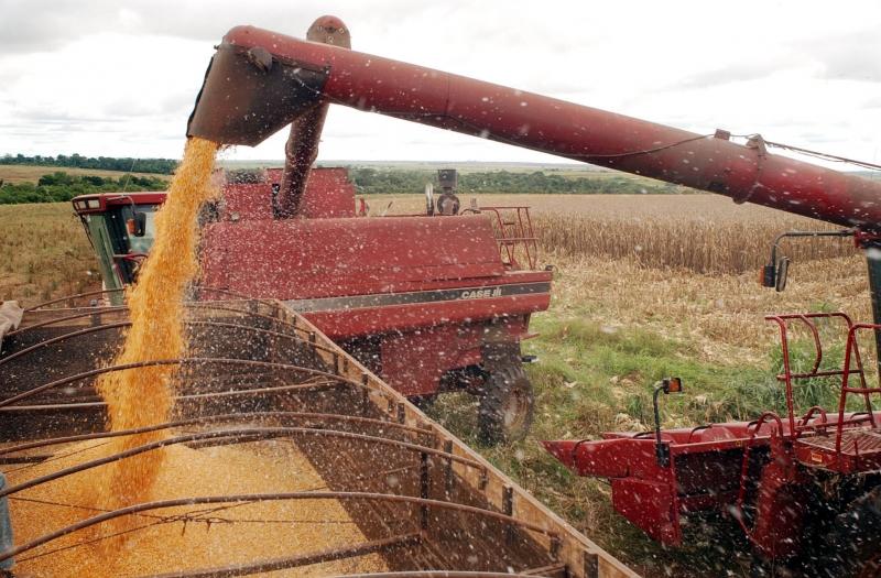Governo autoriza retorno da agropecuária e fabricação de alimentos e bebidas