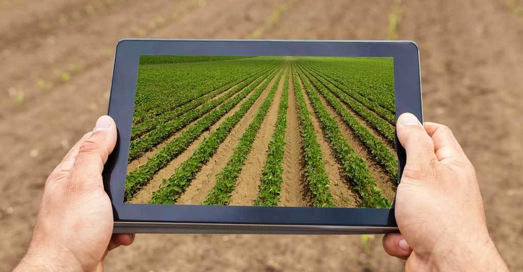 Programa THEch abre inscrições para seleção de startups ligadas ao agronegócio