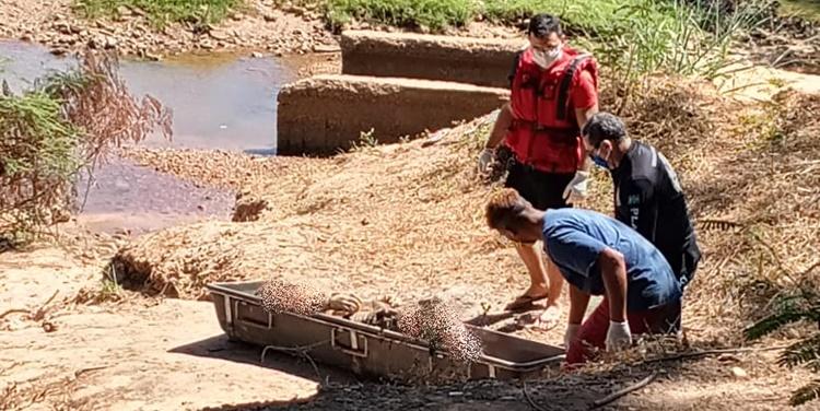 Suspeito de assaltos é encontrado morto no rio Parnaíba