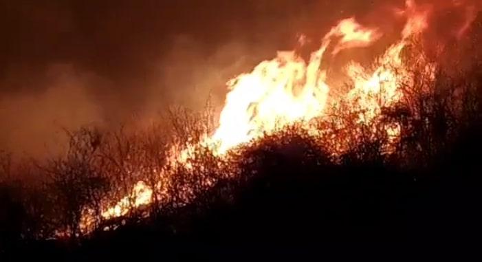 Incêndio de grandes proporções atinge área próxima a sítios arqueológicos no Piauí