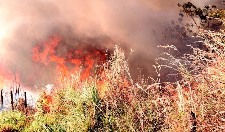 Audiência pública vai discutir sobre as queimadas no Piauí