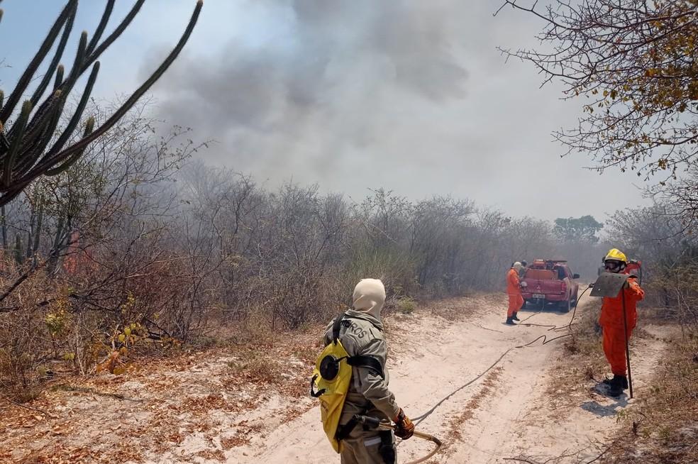 Semar dá início à operação para reduzir efeitos das queimadas no Piauí