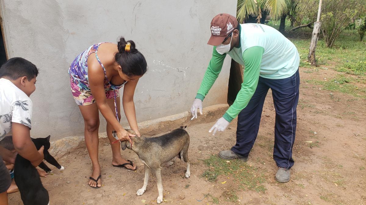 São João do Arraial inicia campanha de vacinação contra a Raiva