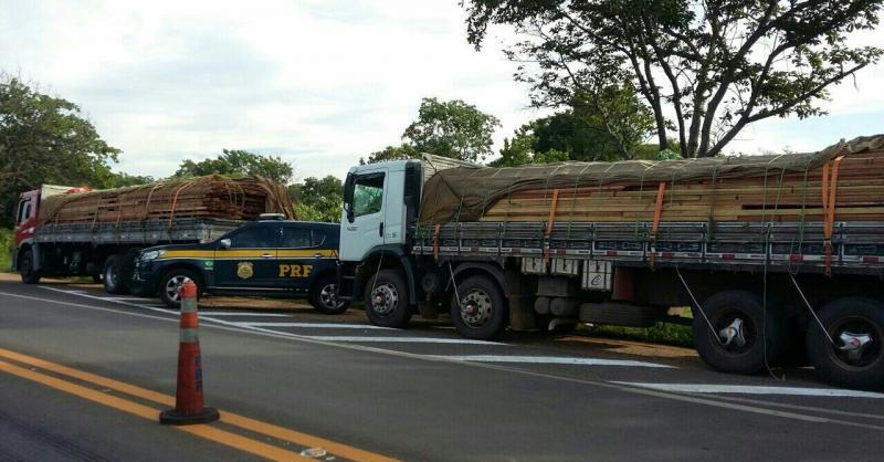 PRF apreende caminhão com 30 toneladas de madeira ilegal